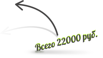 Цена интернет-магазина 22000 рублей