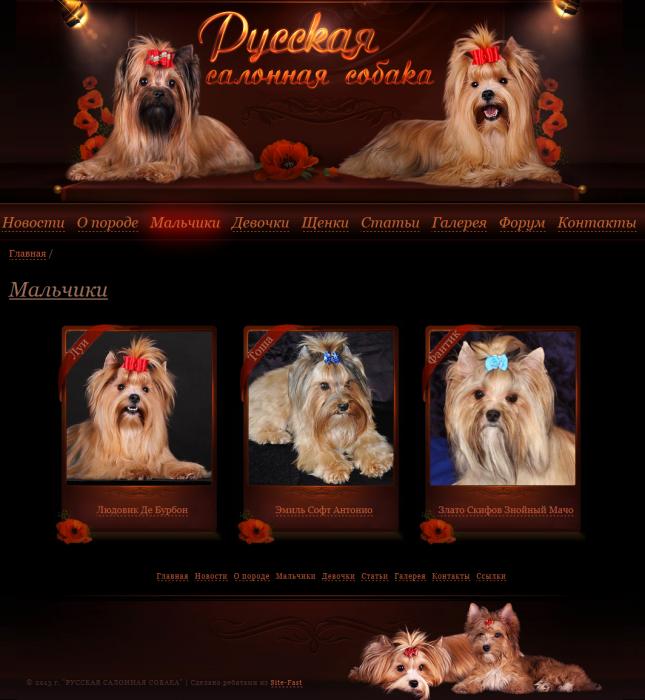 Создание сайта каталога Русских Салонных собак